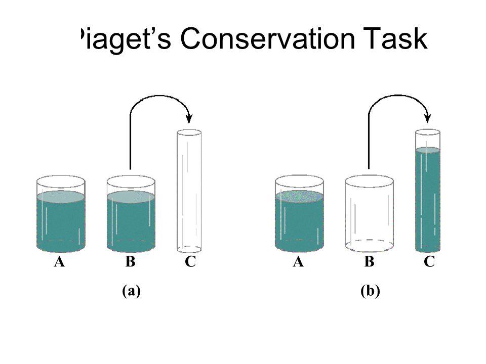 Piaget's Conservation Task