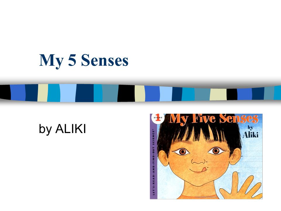 My 5 Senses by ALIKI