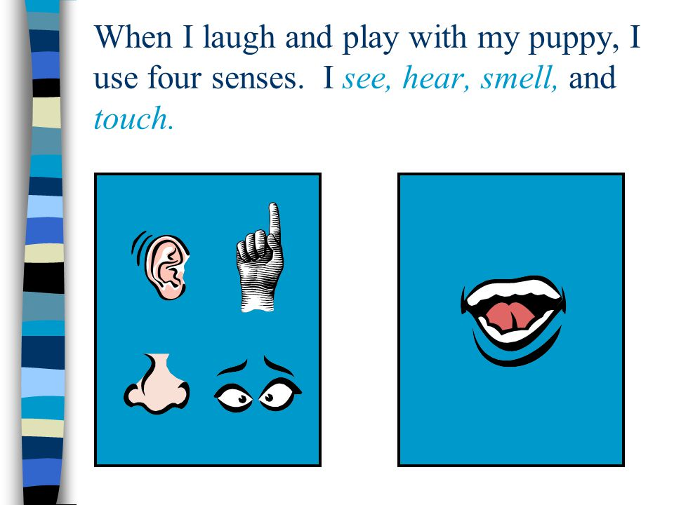 When I laugh and play with my puppy, I use four senses