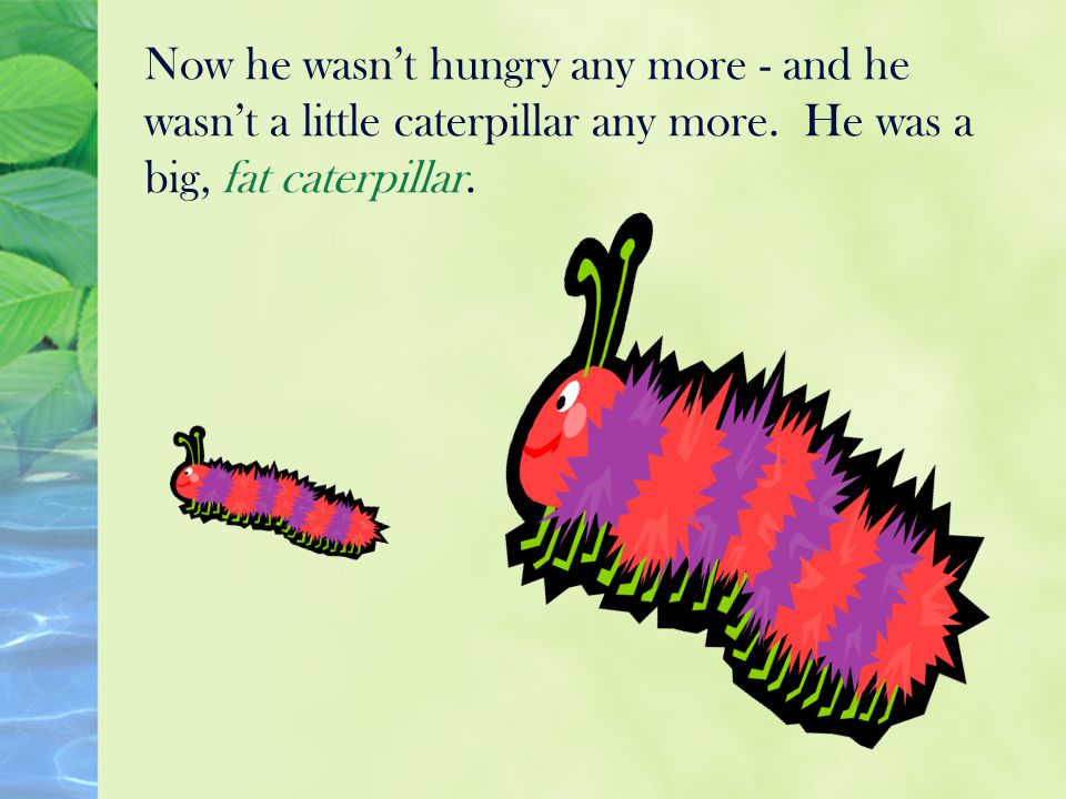 Now he wasn't hungry any more - and he wasn't a little caterpillar any more.