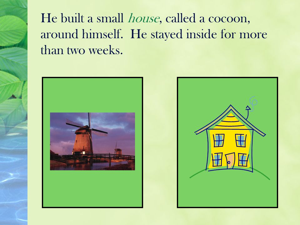 He built a small house, called a cocoon, around himself