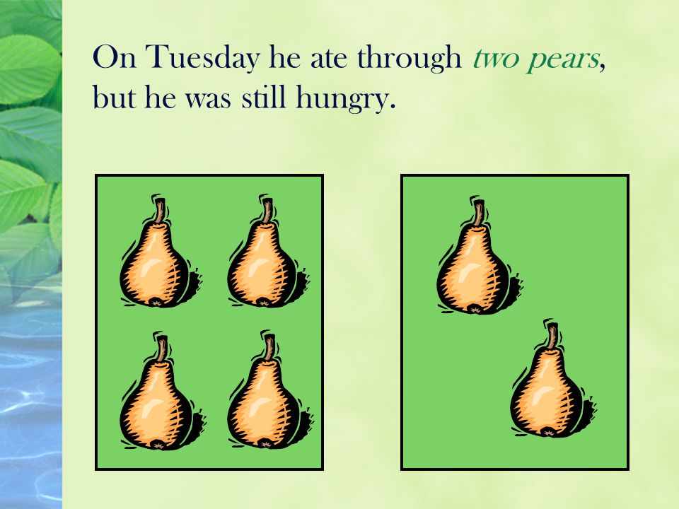 On Tuesday he ate through two pears, but he was still hungry.