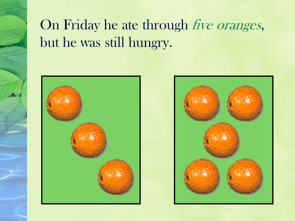 On Friday he ate through five oranges, but he was still hungry.