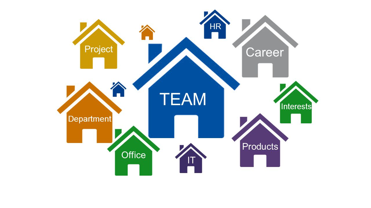 TEAM Career Project Products Office IT Department HR Interests Culture