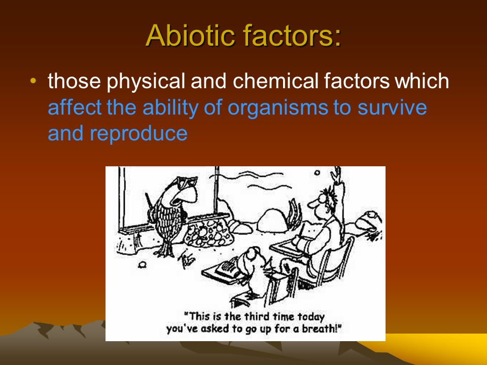 Abiotic factors: those physical and chemical factors which affect the ability of organisms to survive and reproduce.