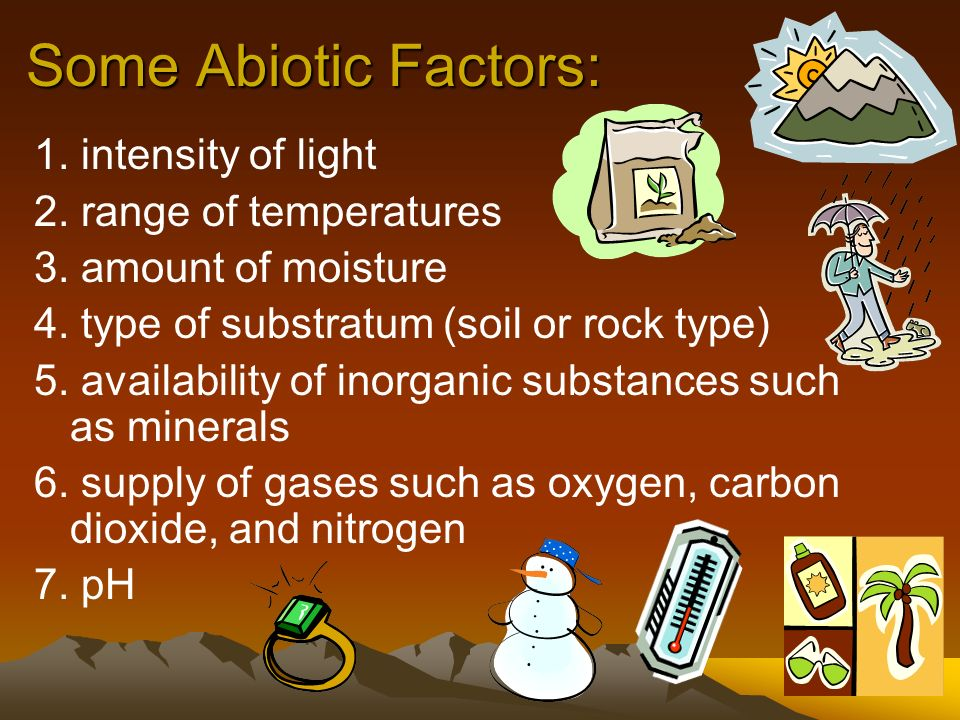 Some Abiotic Factors: 1. intensity of light 2. range of temperatures