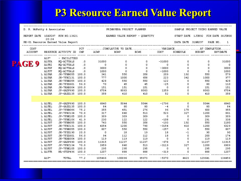 P3 Resource Earned Value Report