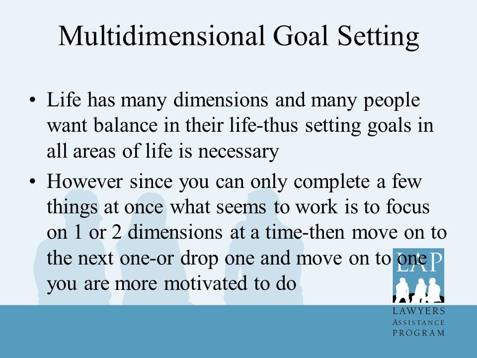 Multidimensional Goal Setting