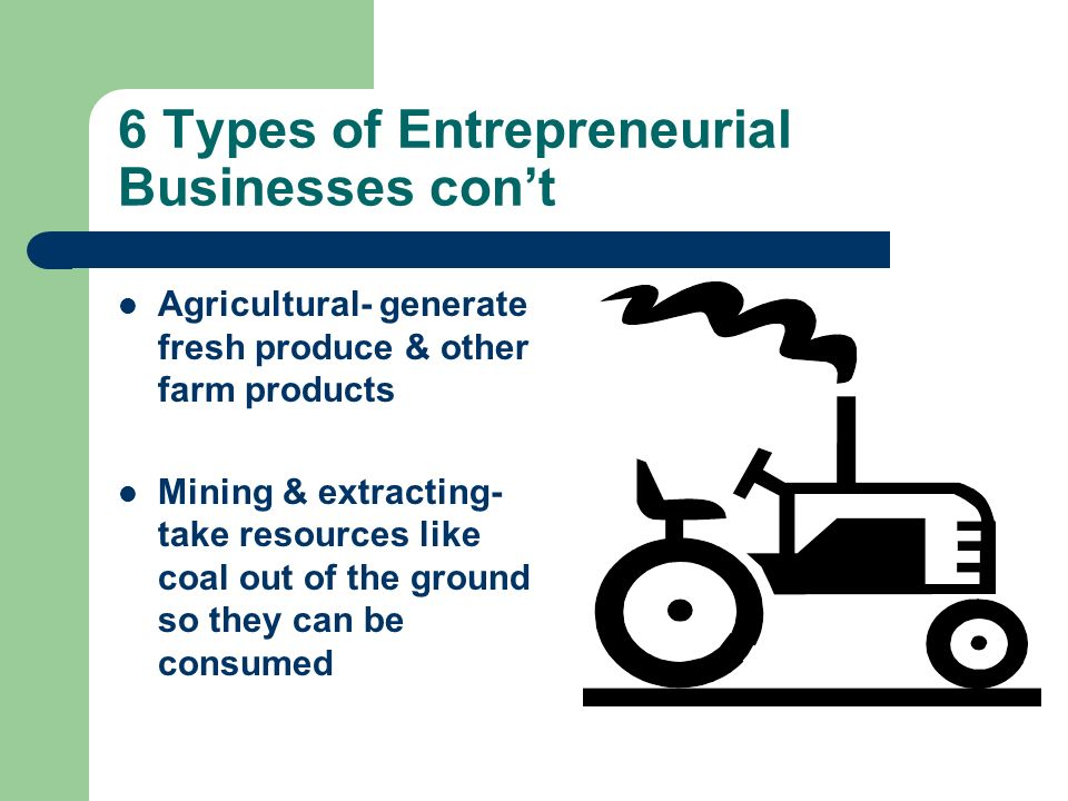 6 Types of Entrepreneurial Businesses con't