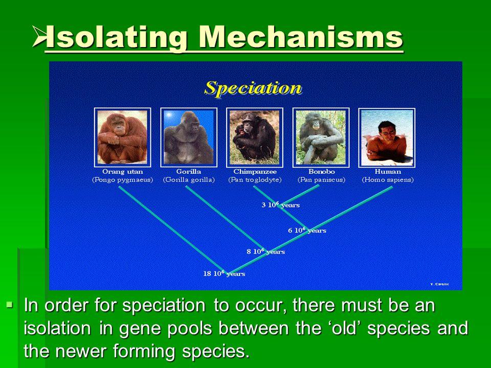 Isolating Mechanisms