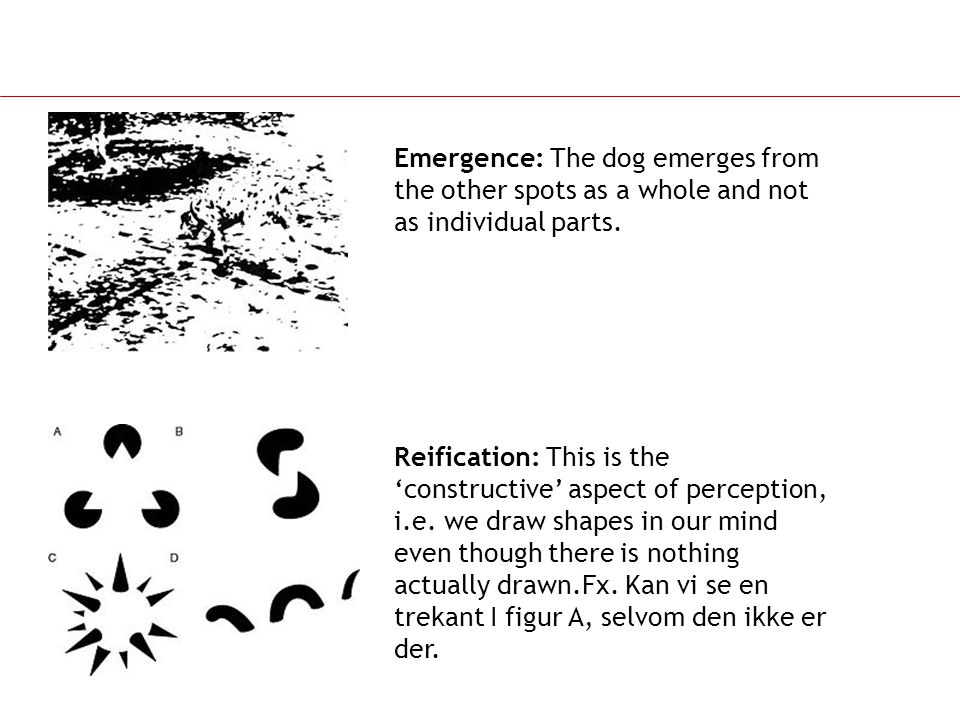 Emergence: The dog emerges from the other spots as a whole and not as individual parts.