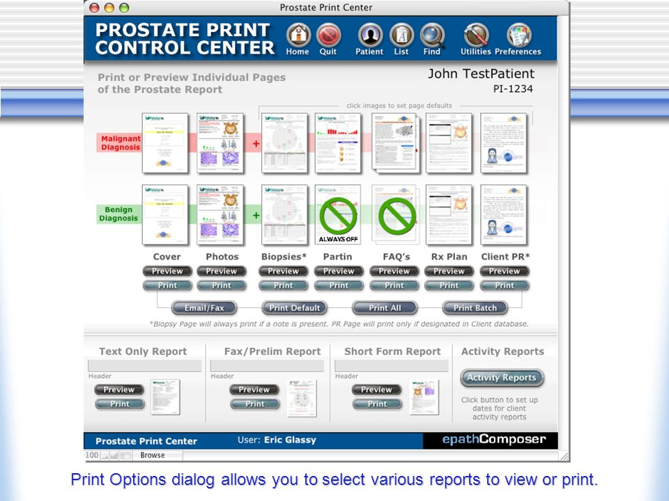 Print Options dialog allows you to select various reports to view or print.