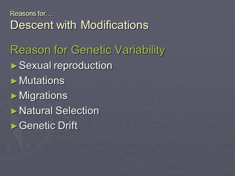 Reasons for…. Descent with Modifications