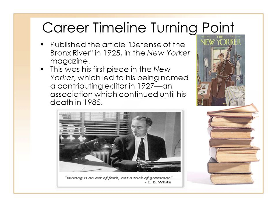 Career Timeline Turning Point