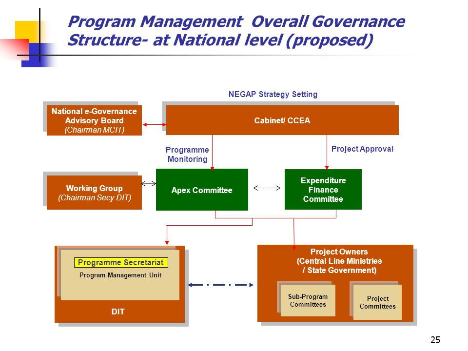 Program Management Overall Governance Structure- at National level (proposed)