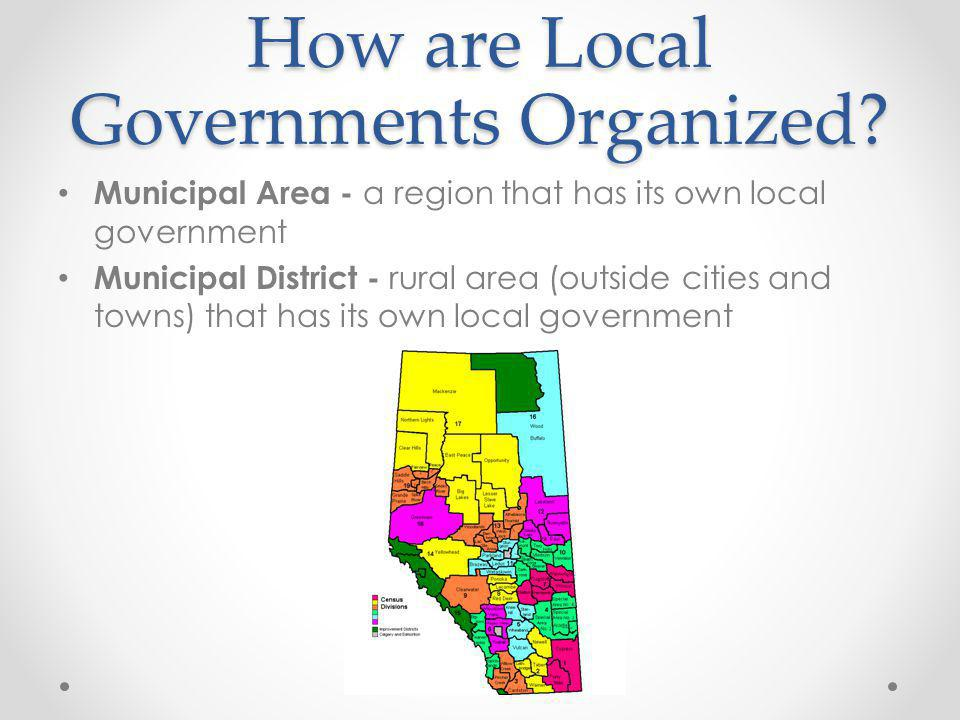 How are Local Governments Organized