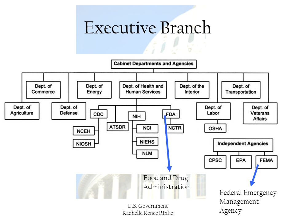 Executive Branch Food and Drug Administration