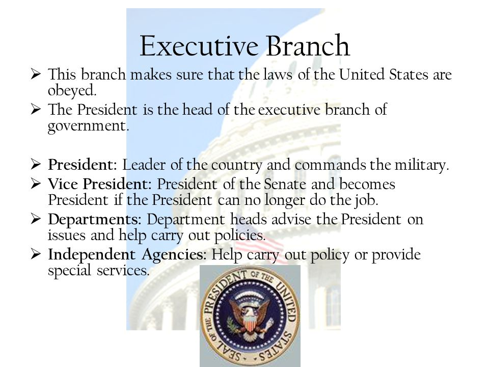 Executive Branch This branch makes sure that the laws of the United States are obeyed.