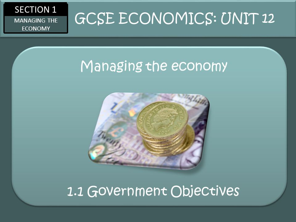 1.1 Government Objectives