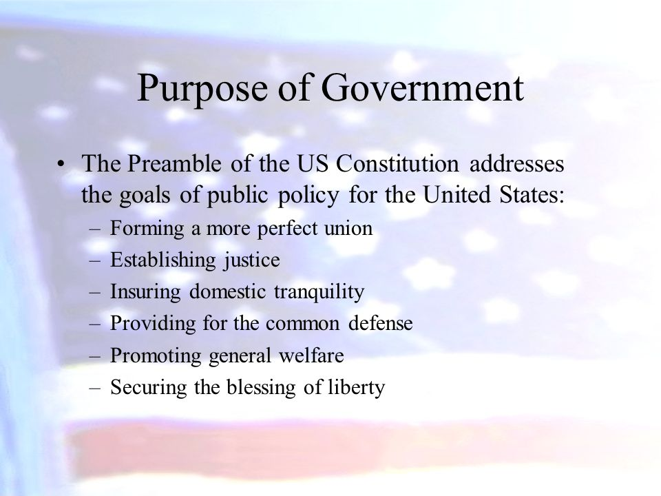 Purpose of Government The Preamble of the US Constitution addresses the goals of public policy for the United States: