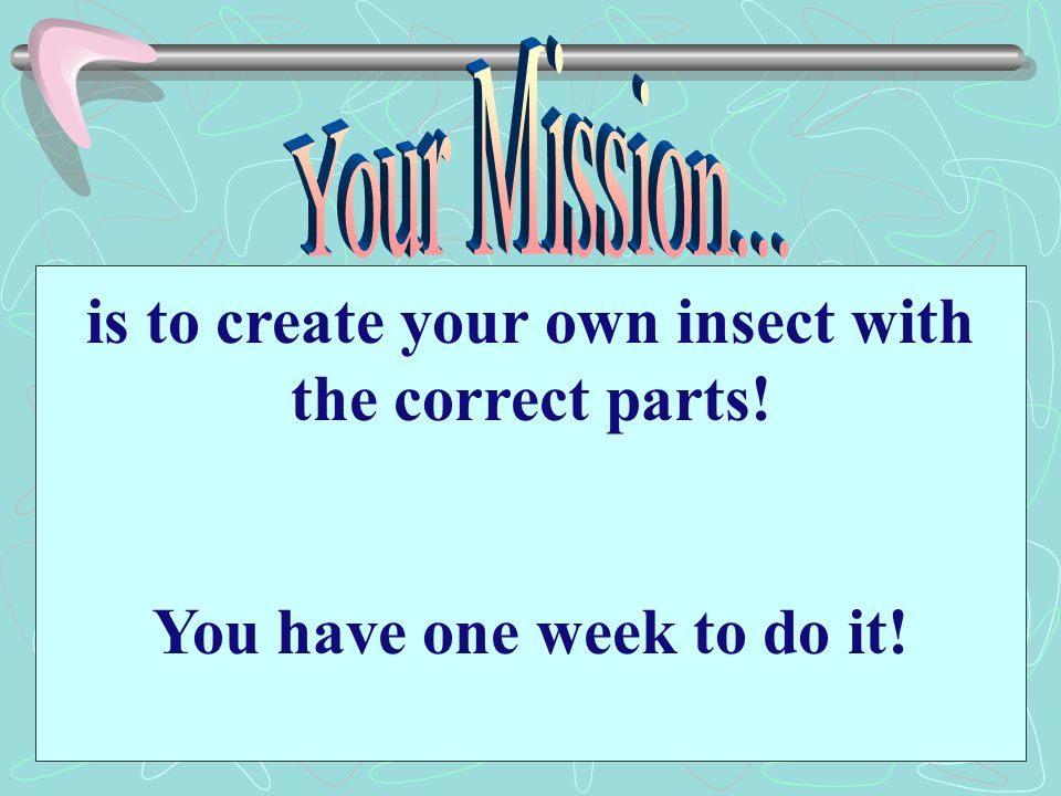 is to create your own insect with the correct parts!