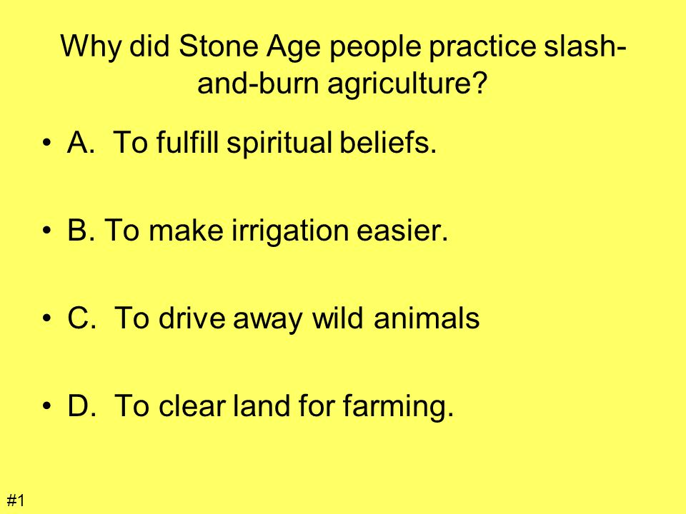 Why did Stone Age people practice slash-and-burn agriculture