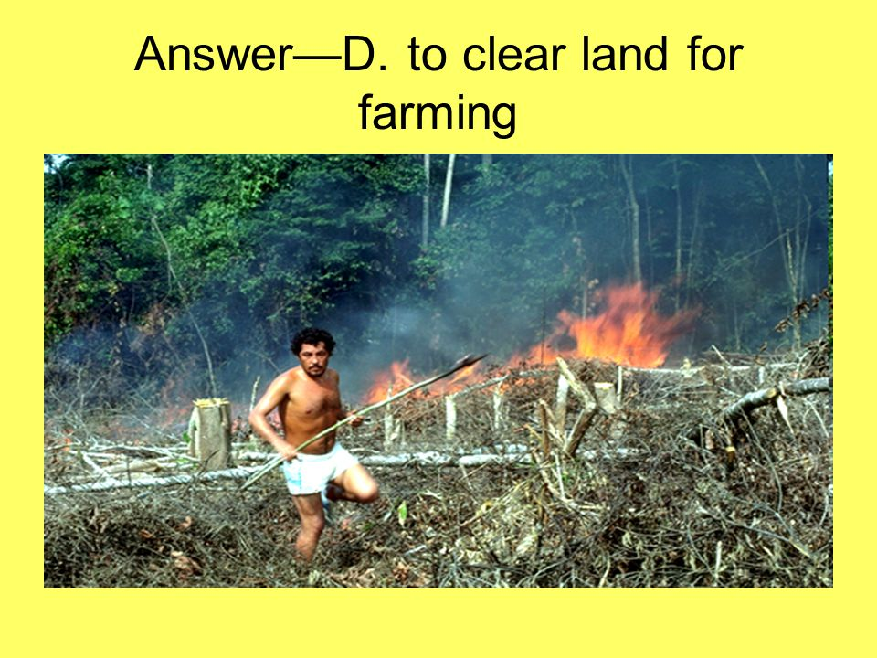 Answer—D. to clear land for farming