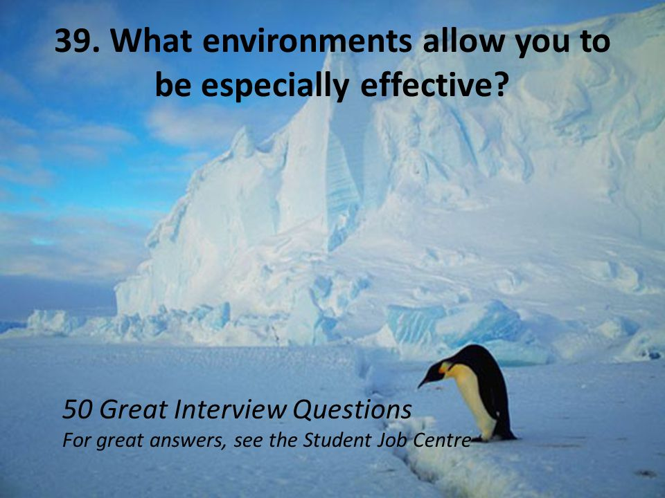 39. What environments allow you to be especially effective