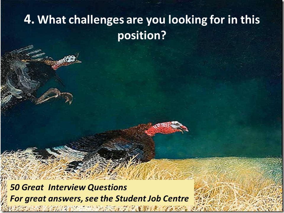 4. What challenges are you looking for in this position