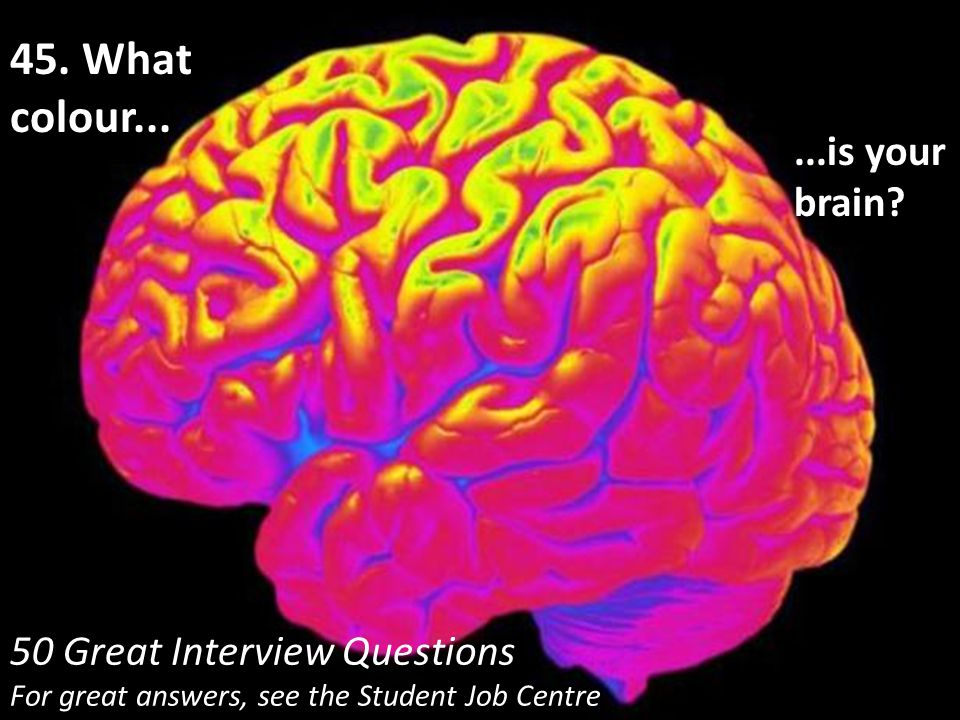 45. What colour... ...is your brain 50 Great Interview Questions