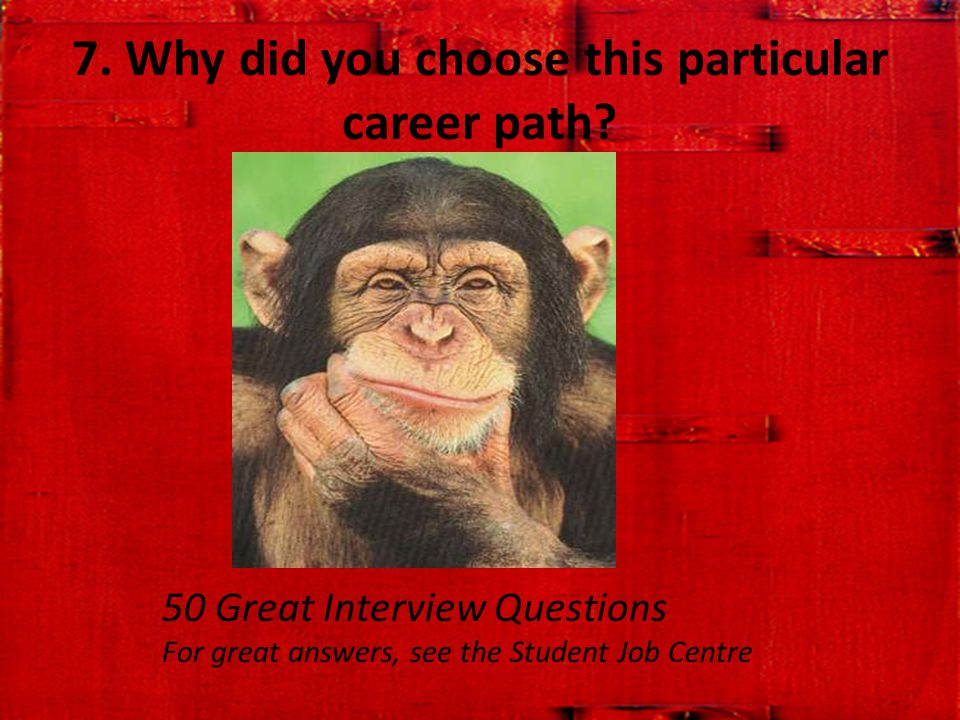7. Why did you choose this particular career path