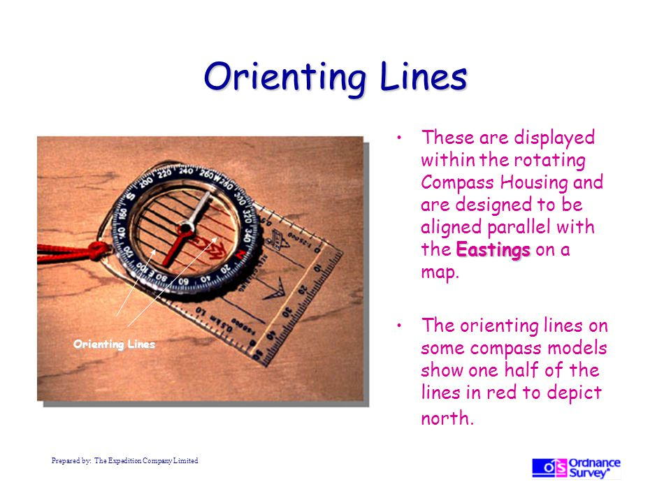 Orienting Lines These are displayed within the rotating Compass Housing and are designed to be aligned parallel with the Eastings on a map.