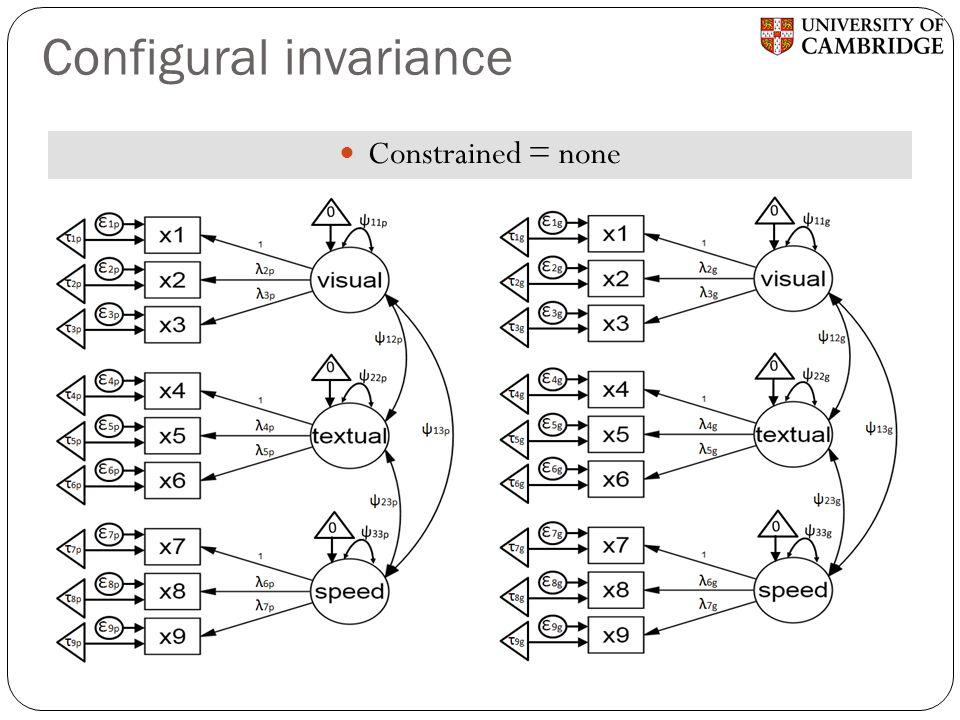 Configural invariance