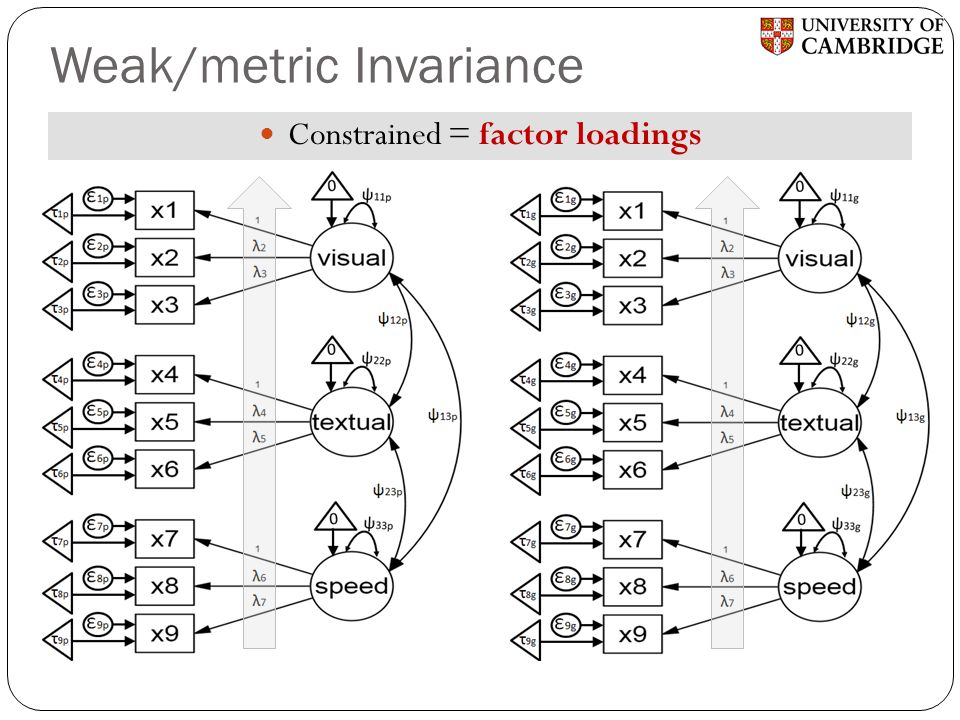 Weak/metric Invariance
