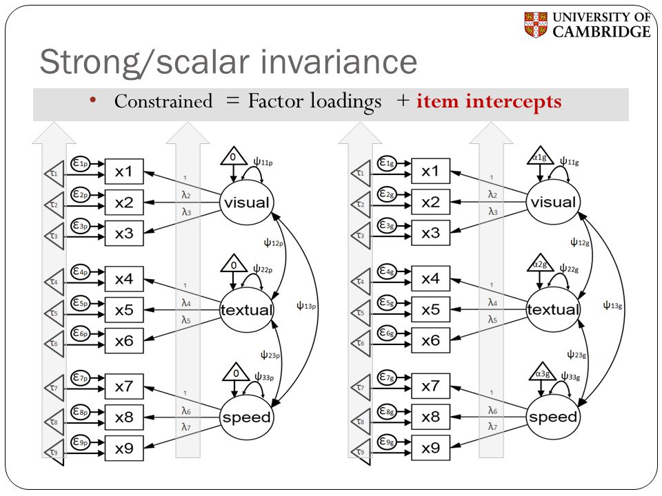Strong/scalar invariance