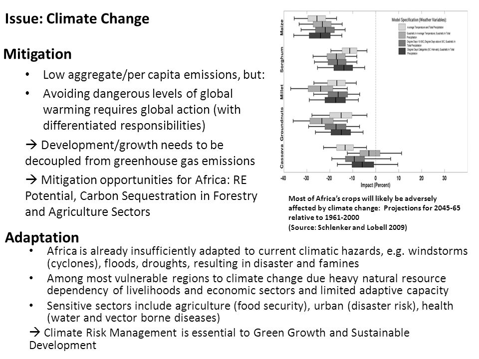 Issue: Climate Change Mitigation Adaptation