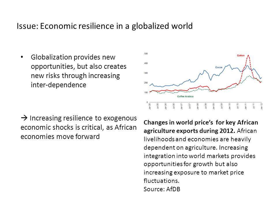 Issue: Economic resilience in a globalized world