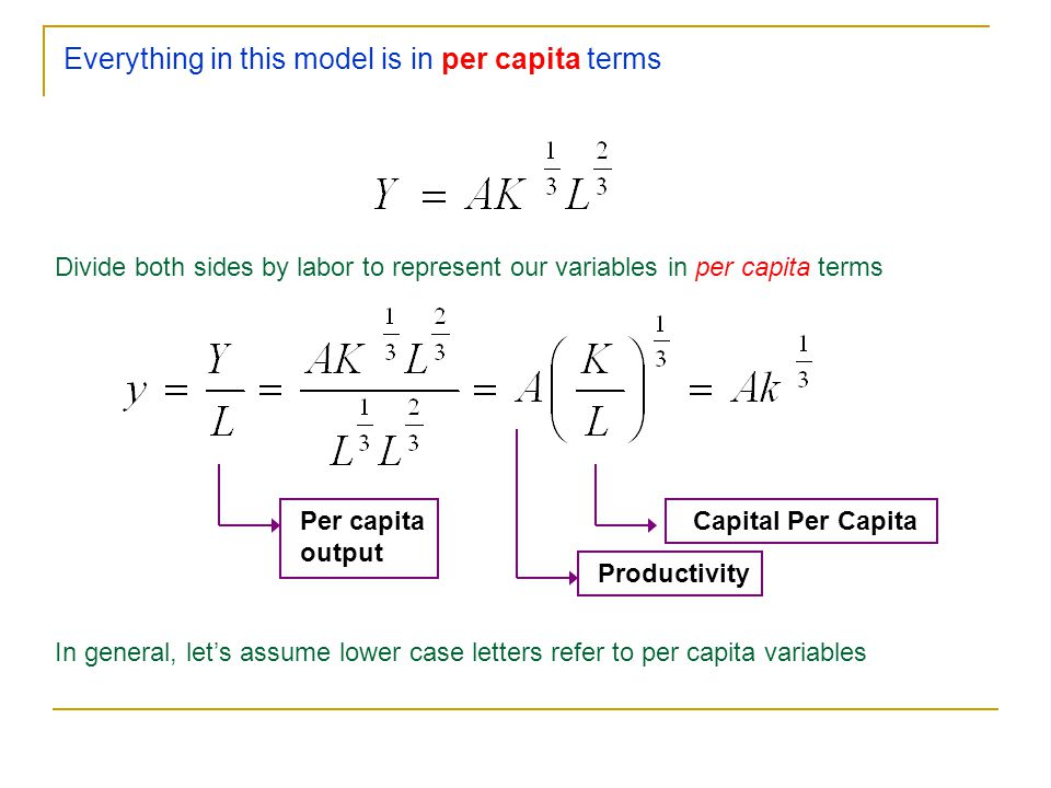 Everything in this model is in per capita terms