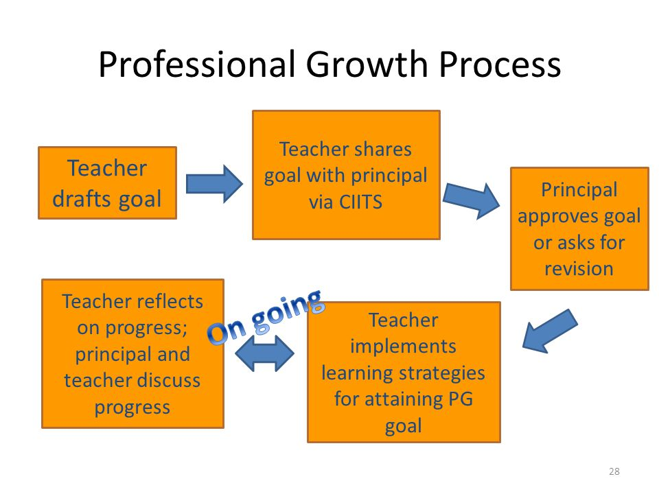Professional Growth Process