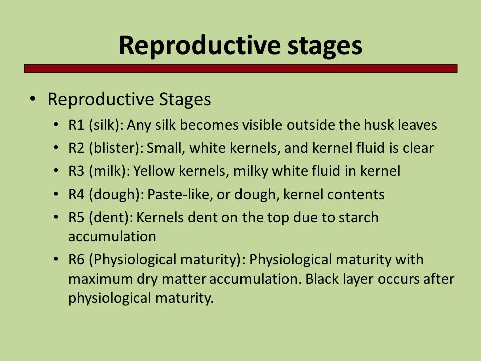 Reproductive stages Reproductive Stages