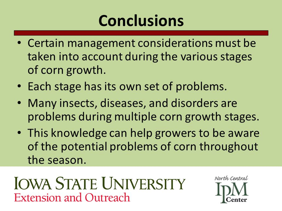 Conclusions Certain management considerations must be taken into account during the various stages of corn growth.