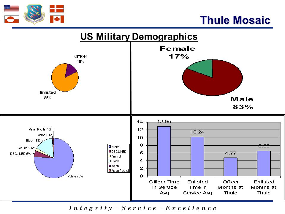 US Military Demographics