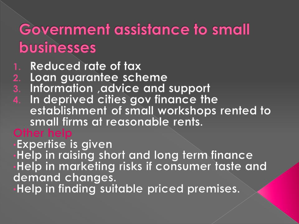 Government assistance to small businesses