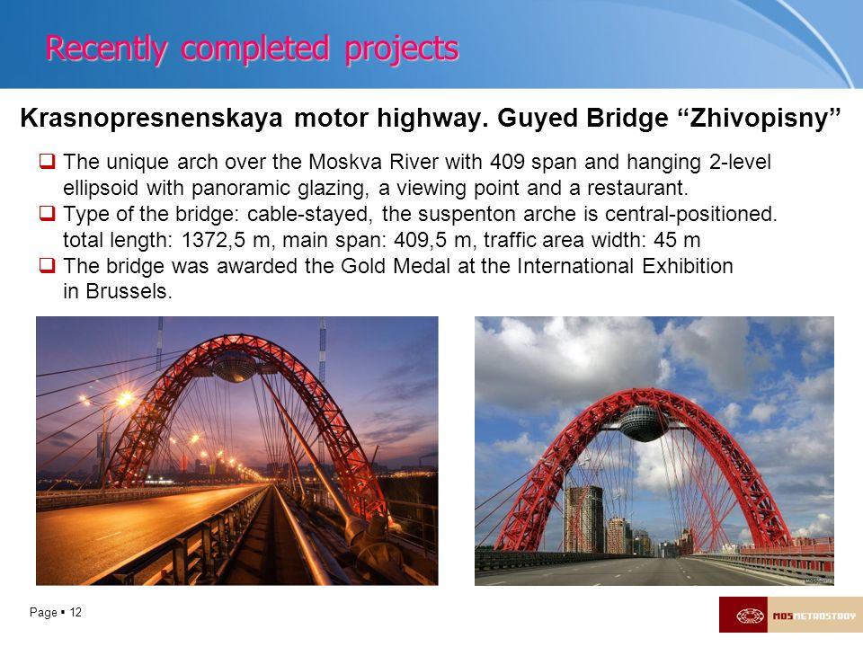 Krasnopresnenskaya motor highway. Guyed Bridge Zhivopisny