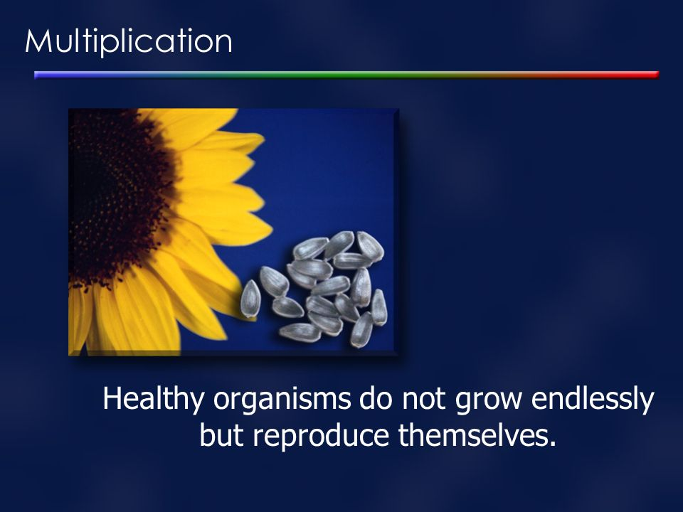 Healthy organisms do not grow endlessly but reproduce themselves.