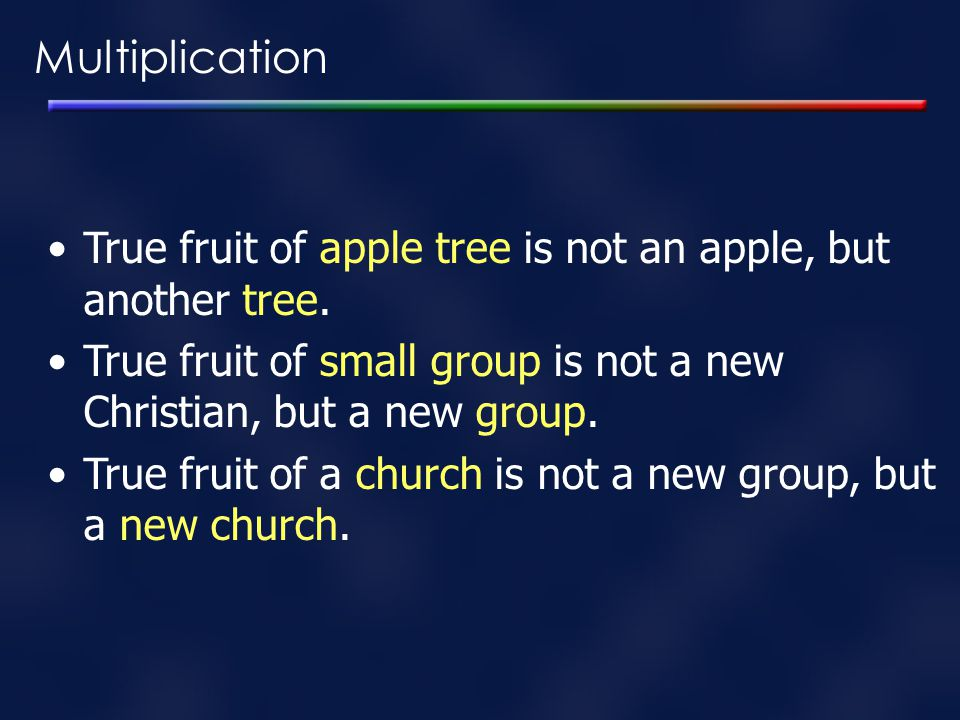 Multiplication True fruit of apple tree is not an apple, but another tree. True fruit of small group is not a new Christian, but a new group.