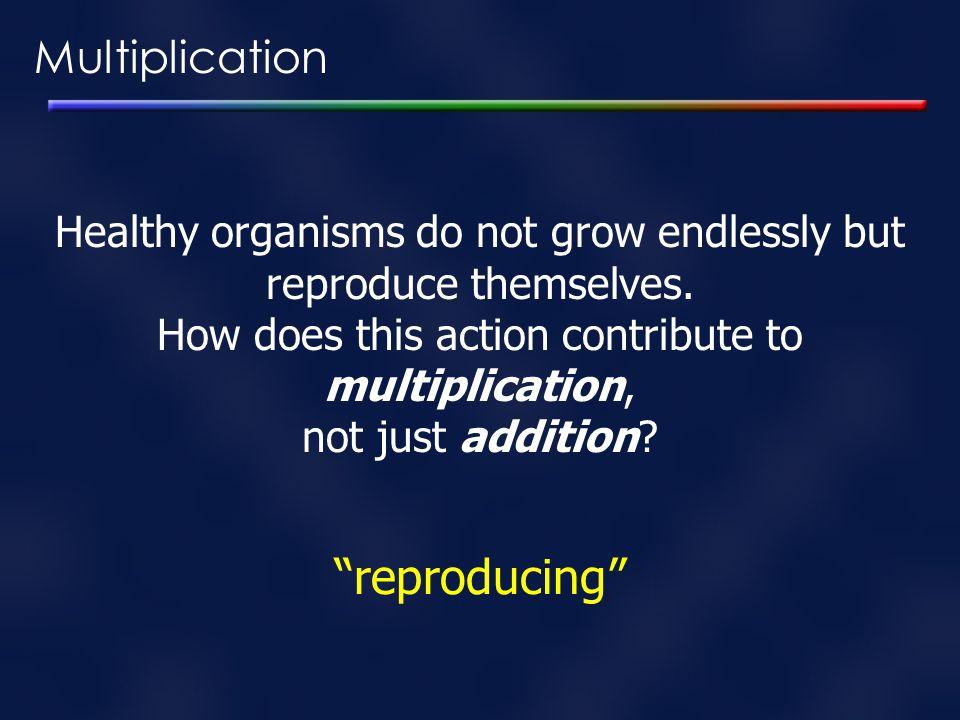 reproducing Multiplication