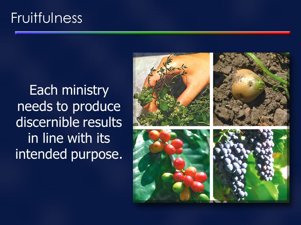 Fruitfulness Each ministry needs to produce discernible results in line with its intended purpose.