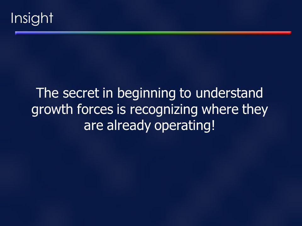 Insight The secret in beginning to understand