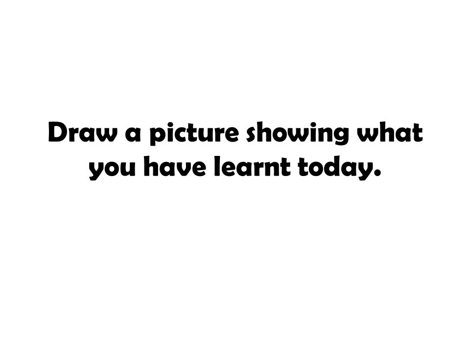 Draw a picture showing what you have learnt today.